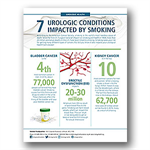 Urology Health and Smoking Infographic